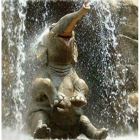 Baby Elephant in Water Painting Kit