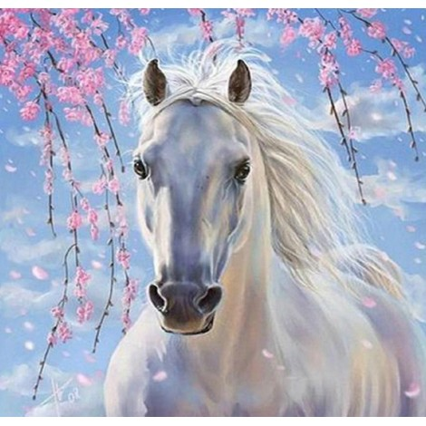 Long Haired White Horse