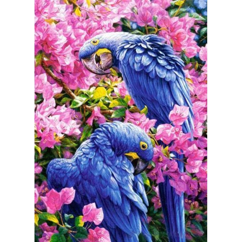 Parrots on Branches ...