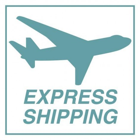 Express Shipping for Rolled Canvas [Large Size]